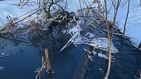 Загрязнение реки Горетовки